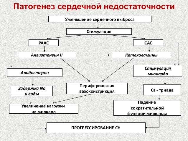 Механизм развития заболевания
