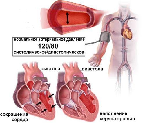 Что такое кровяное давление