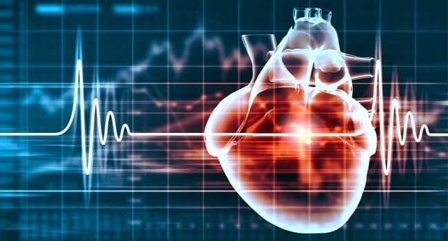 Что такое - эхо сердца